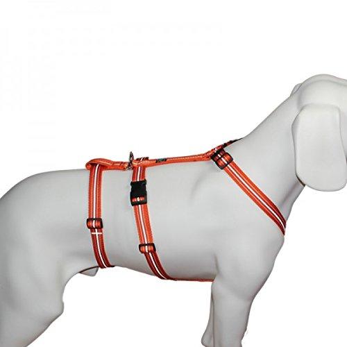 Das Original - NoExit Hundegeschirr  - 100 % ausbruchsicher für Angsthunde, Sicherheitsgeschirr...
