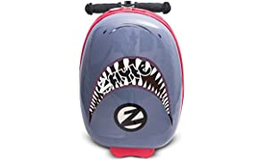 "Zinc Flyte 18"" Case Scooter"