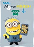 Illumination Entertainment Minions Fleecedecke, Decke 100 x 150 cm Polyester 100 %