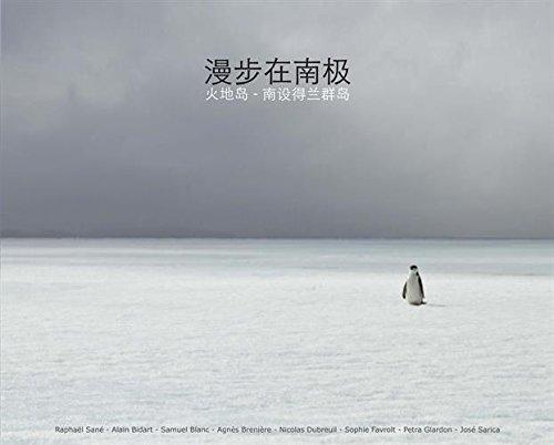 Antarctique (version chinoise)
