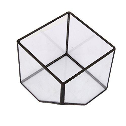 Baoblaze Glasterrarium Tischplatte Geometrische Glas Pflanzgefäß Sukkulenten Pflanztopf Box Weihnachtsgeschenk, Größen Auswählbar - S (Für Boxen Weihnachtsgeschenke)