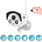 BABY MONITOR ZLMI Hauptüberwachung 720p WiFi-Netzwerkkamera Wasserdichte HD-Webcam und Android/Ios / Computer