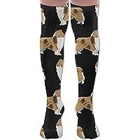 ruishandianqi Hohe Socken New Rough Collie Dog Fashion Stylish Comfortable Knee High Socks Long Socks for Women... preisvergleich bei billige-tabletten.eu