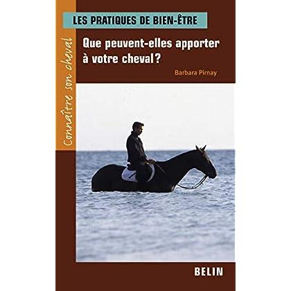 Les pratiques de bien-être : Que peuvent-elles apporter à votre cheval ?