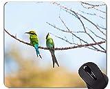 Yanteng El cojín de ratón CREA para requisitos particulares, cojín de ratón Animal del Juego del colibrí de África de Las Aves acuáticas