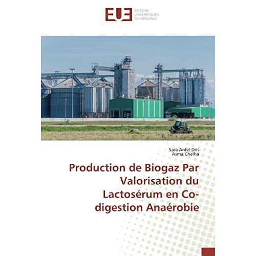 Production de Biogaz Par Valorisation du Lactosérum en Co-digestion Anaérobie