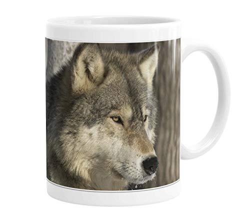 Becher/Tasse/Kaffeebecher/Kaffeepott aus Keramik - 330 ml Motiv: Wolf/Grauwolf Porträt (01)