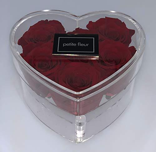 Piment d/'espelette en guirlande Longueur 65 cm 23 piments rouges 7 cm