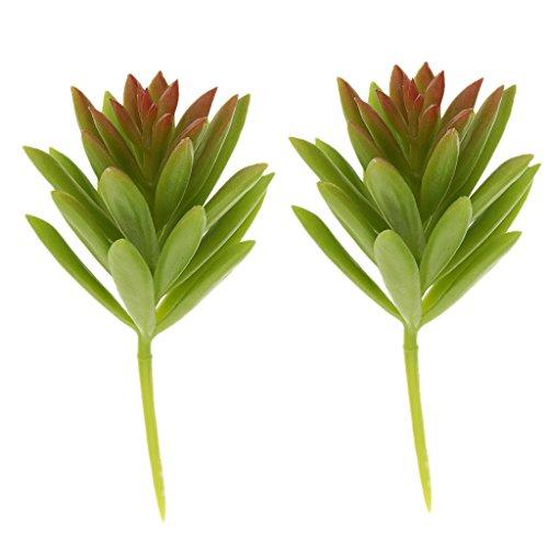 Newsbenessere.com 41wKX2wy7dL 2pcs Artificiale Succulenta Bucaneve Fogliame Pianta Plastica Decorazioni Per La Casa Verde