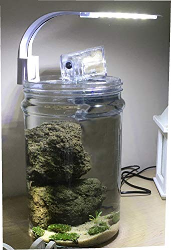 Frenkbox kit mini micro nano acquario tropicale 5 litri completo cilindrico caridinaio betta