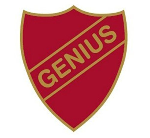 genius-enamel-shield-badge-old-school-style