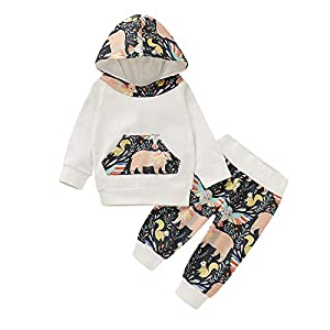 Chennie bebé niño bebé niña niño Manga Larga con Capucha Top + Pantalones Conjunto de Ropa Conjunto 12