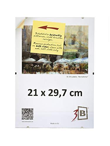 3B Set di 10 Pezzi Cornici a Giorno Clip 21x29,7 cm (A4) - Portafoto Senza Cornice con Vetro stirene