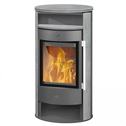 Fireplace Ascherost für