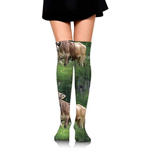 XCVNBX Real Swiss Cow Brown Knee High Graduated Compression Socks for Unisex - Best Medical, Nursing, Travel & Flight Socks - Running & Fitness - 5 Flight Real