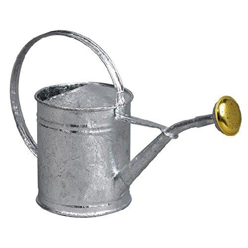 Guillouard - 80300 - Arrosoir acier galvanisé 1l