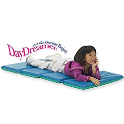 Peerless Plastics Inc. The Daydreamer 2X24X48 9 Mil Vinyl Folds To 12 X 24