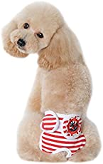 Red, S : Durable High-quality Sweet Fashion Cute Pet Dog Panty In Season Sanitary Pants For Female Dog Clothes For Small Dogs Manteau