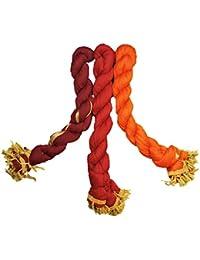 Dupatta (Weavers Villa Set Of 3 Multicolor Chiffon Dupattas (70 Different Colour Set Combinations Available)) - B06XCYL75G