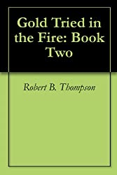 Gold Tried in the Fire: Book Two (English Edition)