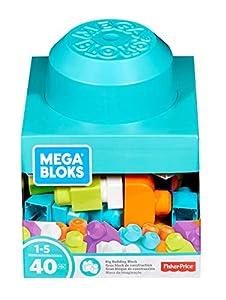 MEGA- Megabloque de Construcción Bloques de Construccià, Multicolor (Mattel FRX19)