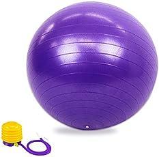 65cm Anti-Burst Yoga Exercise Ball with Pump and Free PDF Instruction, Purple