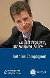 La littérature, pour quoi faire?: Leçon inaugurale prononcée le jeudi 30novembre2006