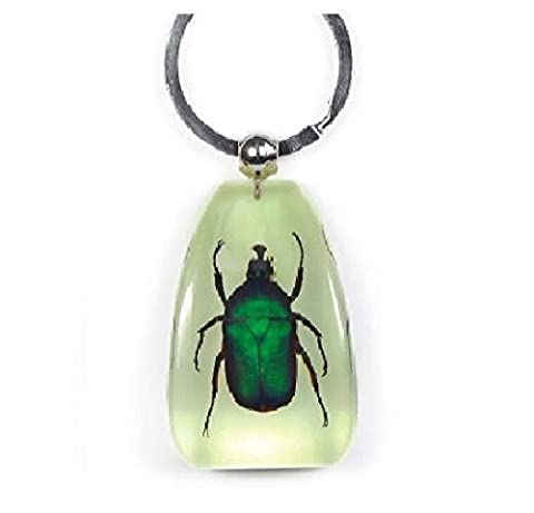 Echter Smaragd Rose Chafer–großen Glow in the Dark Schlüsselanhänger Insekten