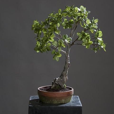 Ficus Bonsai Bonsaibaum Baum Kunstbaum Kunstpflanze im Topf, 66 cm