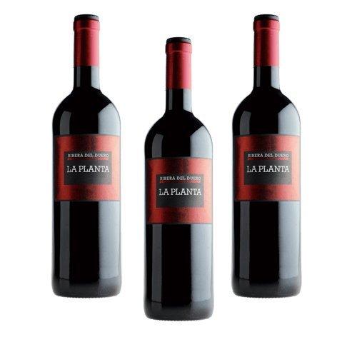 La Planta De Arzuaga Tinta Fina - Vino Tinto - 3 Botellas