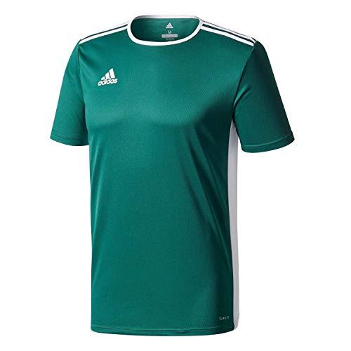 Adidas entrada 18 jsy teamtrikot, t-shirt bambino, verde (solar green/white), 11-12 anni