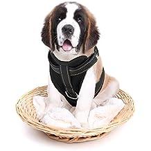 Reflectante Árnes de Perro para Coche Resistente Chaleco de Seguridad NO ELÁSTICO Árnes Ajustable de Malla Transpirable, Negro