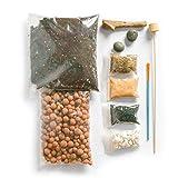 ConcreteLab&Co Terrarium Kit mit Schritt für Schritt Anleitung, inkl. Boden, anthrazit, pebbles, Sphagnum-Moos, Schiefer, sand, Treibholz und Pinsel verpackt in London, M