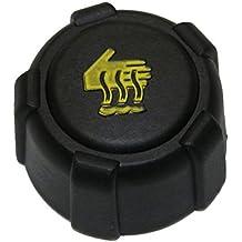 AERZETIX: Tapon para deposito de refrigerante para coche auto vehiculos C10121