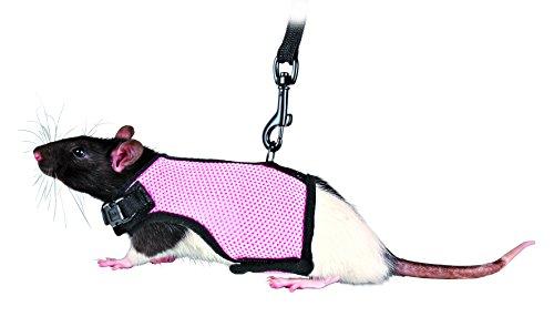 Trixie 61511 Kleintiergarnitur für Ratten, Nylon, 9-12 cm/12-18 cm Sortier (Misc.)