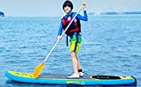 """Z-Ray """"K9"""" SUP Standup Paddle Board – 244x76x10cm - 2"""