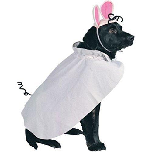 Maus Kostüm Für Hunde - Rubies Maus Kleine Haustiere Kostüm für Ihren Hund Oder Katze-Spass für Halloween
