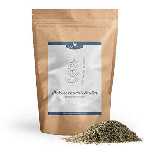 Krauterie Acker-Schachtelhalm Schachtelhalmkraut Zinnkraut geschnitten in sehr hochwertiger Qualität, frei von jeglichen Zusätzen, als Tee (Equisetum arvense) - 500 g