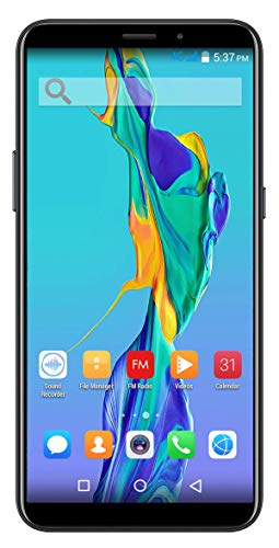 Xifo Spiria Model Fly2 4G Smartphone (Jio 4G Sim Not Supported) 2GB RAM with 5.7 Inch Display and 16GB ROM Smartphone (Gold)