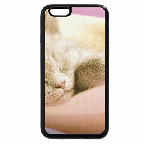 iphone-3s-iphone-6-coque-noir-un-chat-pose-sur-un-bunning