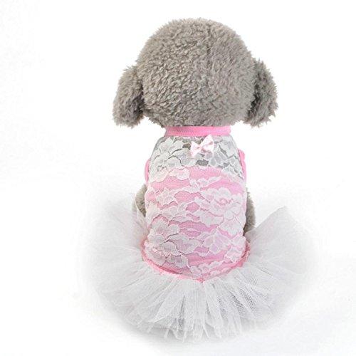Imagen de mascotas/dogstutu vestido, transer® perro gato lazo tutú disfraz de princesa falda vestido encaje mascota cachorro perro prendas de vestir ropa mascota mini faldas para perros ropa/ropa