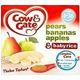 Cow & Gate Apple & Pear plus riz Fruité Dessert 4mois + (4x100g) - Paquet de 2