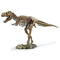 Elenco Science Tech Trex Skeleton 36 Scale Replic
