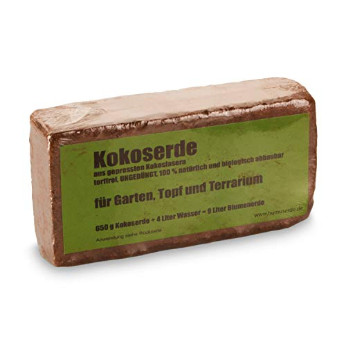 yayago Humusziegel - Kokoserde -gepresste Blumenerde aus Kokosfasern - torffrei, ungedüngt, 100{9c86555191369a7af526a523fab913e6edc4682ae41219ee22f48d553fff2524} natürlich und biologisch abbaubar - für Garten, Topf und Terrarium 1 x 650 g