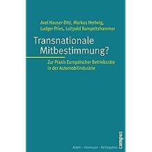 Transnationale Mitbestimmung?: Zur Praxis Europäischer Betriebsräte in der Automobilindustrie (Arbeit - Interessen - Partizipation)