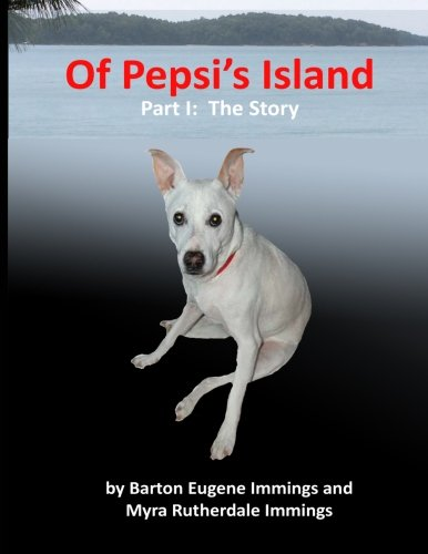 of-pepsi-island-part-i-the-story