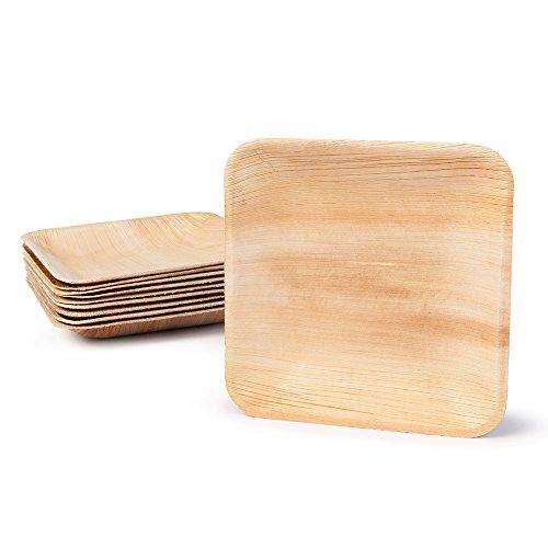 BIOZOYG Greenbox 200 x Assiettes jetables en feuilles de palmier | 15 x 15 cm, rectangulaire | 100% biodégradables, compostables | individuelle, texture décorative | stable et robuste | pour BBQ, Outdoor et Party