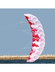 Vige 3D-Delfin-Drachen mit Griffschnur Stunt-Fallschirm Weicher Parafoil-Surf-Drachen-Sportdrachen