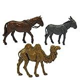 Landi Cammello, Cavallo e Asino Rif.cm.6