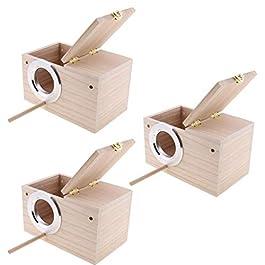 B Blesiya 3 Pezzi Casetta per Uccelli di Legno per Cocorite Casa per Pappagalli Uccelli Scatola di Allevamento M/L/XL